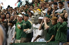 USF Men's Basketball